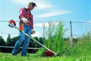 Мероприятия по обеспечению пожарной безопасности: покос сухой травы и вырубка засохшего кустарника