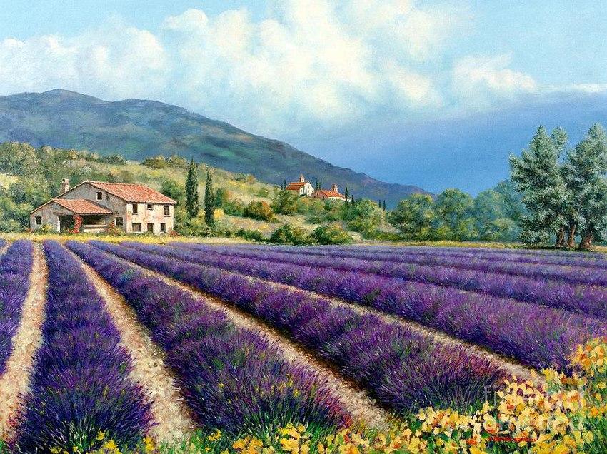 Плата за аренду земли во Франции может осуществляться не только в денежной форме