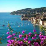 Гид по недвижимости региона Прованс — Альпы — Лазурный Берег