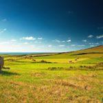 Цена на земельный участок под застройку выросла