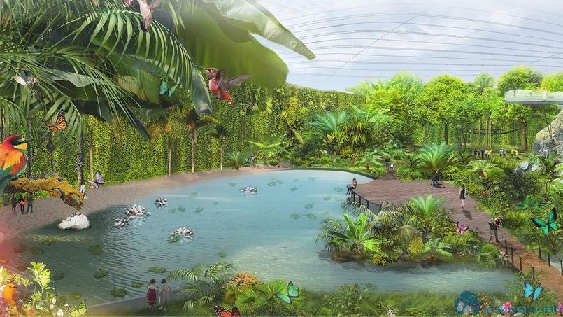 В 2021 году Па-де-Кале откроет самую большую тропическую оранжерею в мире