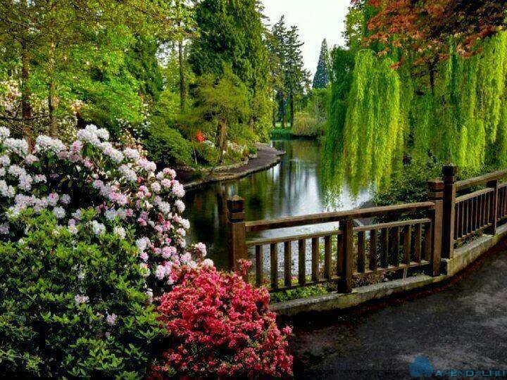 ботаническом саду Myrtes