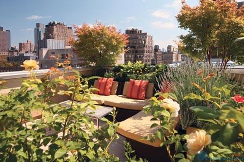 Должен ли собственник квартиры компенсировать расходы нанимателя по содержанию сада на крыше?