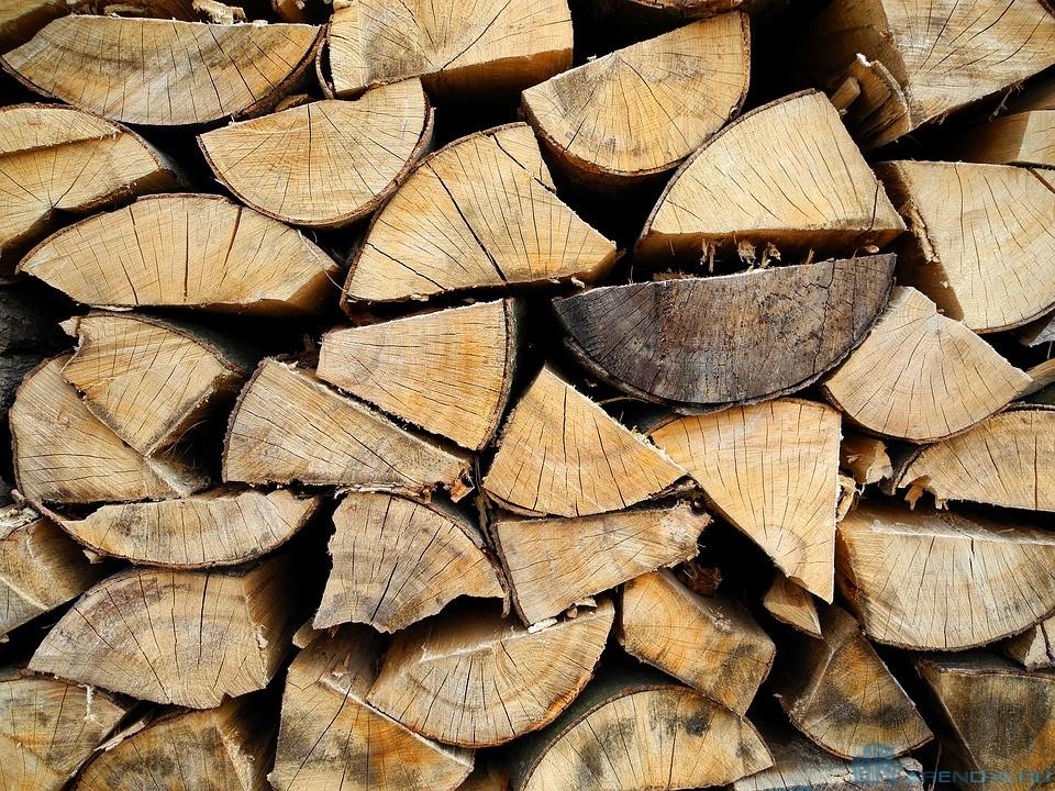 Во Франции дома снова начнут топить древесиной