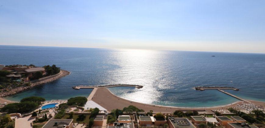 Купить 5 комнатные апартаменты в Монако за 15900000 Евро