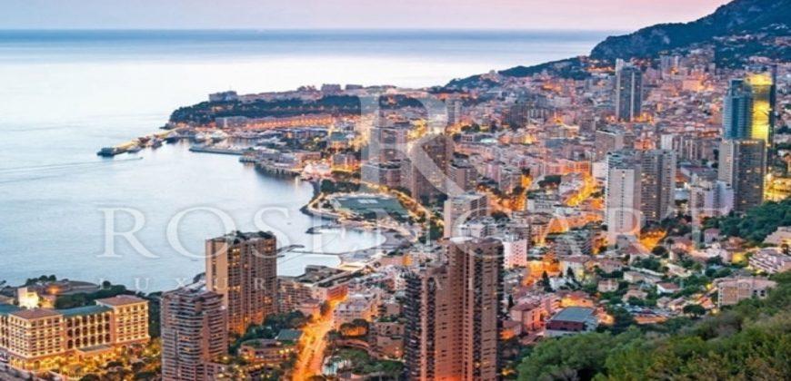 Купить 5 комнатные апартаменты в Монако за 11500000 Евро