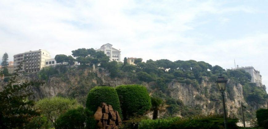 Купить 1 комнатные апартаменты в Монако за 2750000 Евро