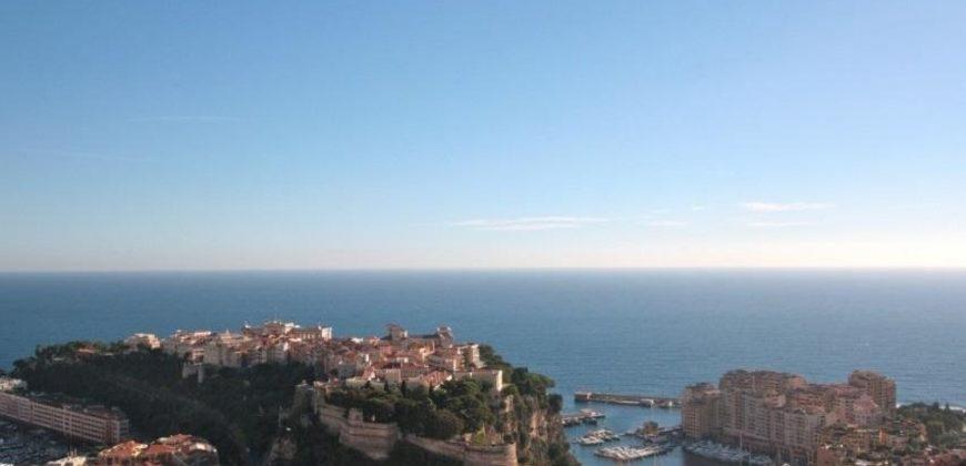 Купить 3 комнатные апартаменты в Монако за 8300000 Евро