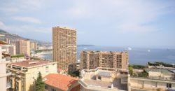 Купить 4 комнатные апартаменты в Монако