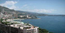Купить 3 комнатные апартаменты в Монако за 13900000 Евро