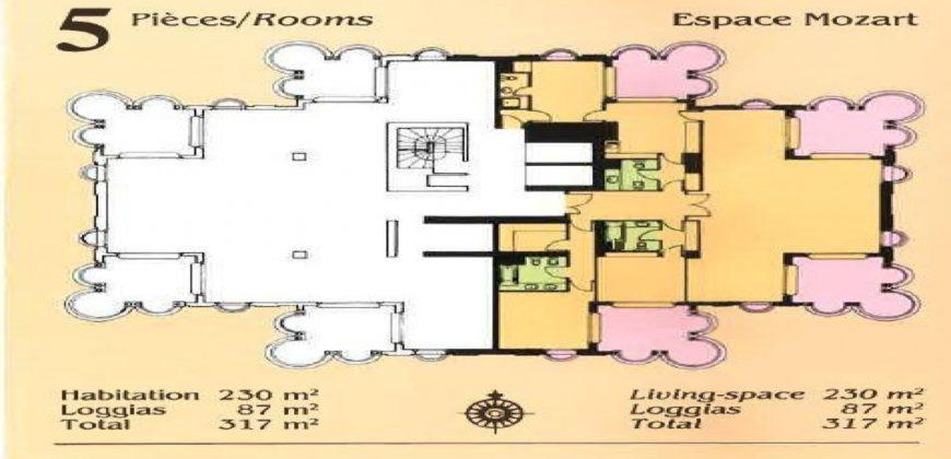 Купить 5 комнатные апартаменты в Монако за 14000000 Евро