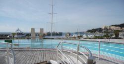 Купить 6 комнатные апартаменты в Монако за 250000 Евро