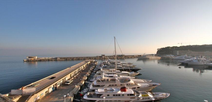 Купить 3 комнатные апартаменты в Монако за 35000000 Евро