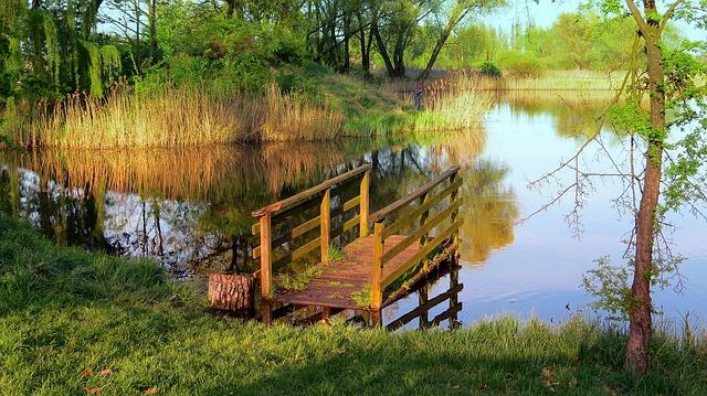 Новости судебной практики: грязная вода в пруду