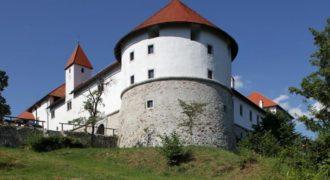 Дом в Велике Лашче, Словения, 160 м2