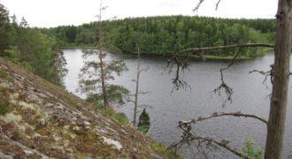 Инвестиционный проект в Хельсинки, Финляндия, 1000 м2
