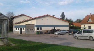 Коммерческая недвижимость Ползела, Словения, 460 м2