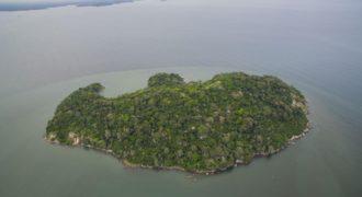 Остров Жемчужный архипелаг», Панама, 89 Га