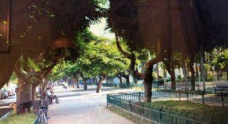 Пентхаус в Тель-Авиве, Израиль, 308 м2