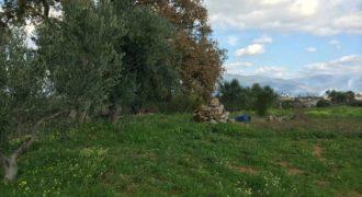 Вилла в Мессини, Греция, 140 м2