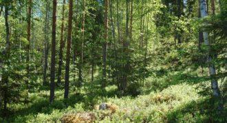 Вилла в Пуумала, Финляндия, 200 м2