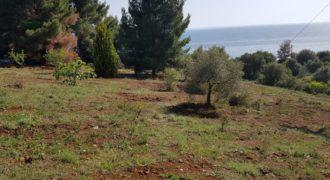 Земля на Халкидиках, Греция, 6000 м2