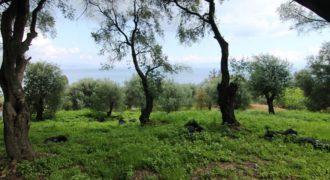 Земля на Корфу, Греция, 3300 м2