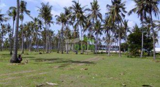 Земля о. Бали, Индонезия, 550000 м2