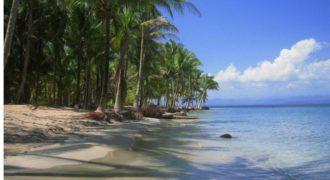 Земля Проект пляжей Экополис, Панама, 2.73 Га