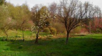Земля в Рогашка-Слатине, Словения, 24512 м2
