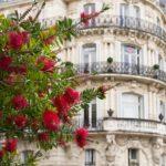 Инвесторам о ценах и арендных доходах в Монпелье